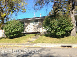 2 Br Basement in Radisson Heights: Dog Negotiable, Utilities Included