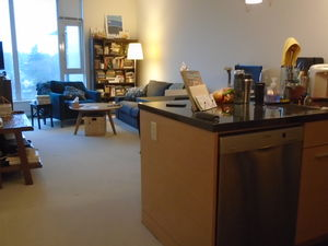 FANTASTIC furnished 2bd+2bth+flx+2pkg JANUARY 1st at PULSE west broadway & maple PERFECT Westside Location